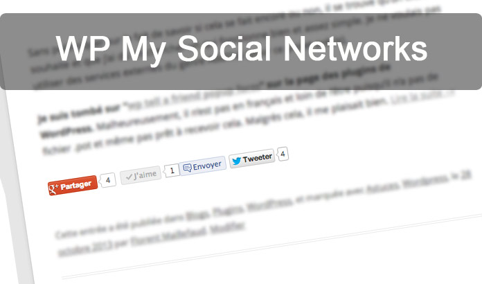 Plugin WordPress : WP Social Networks